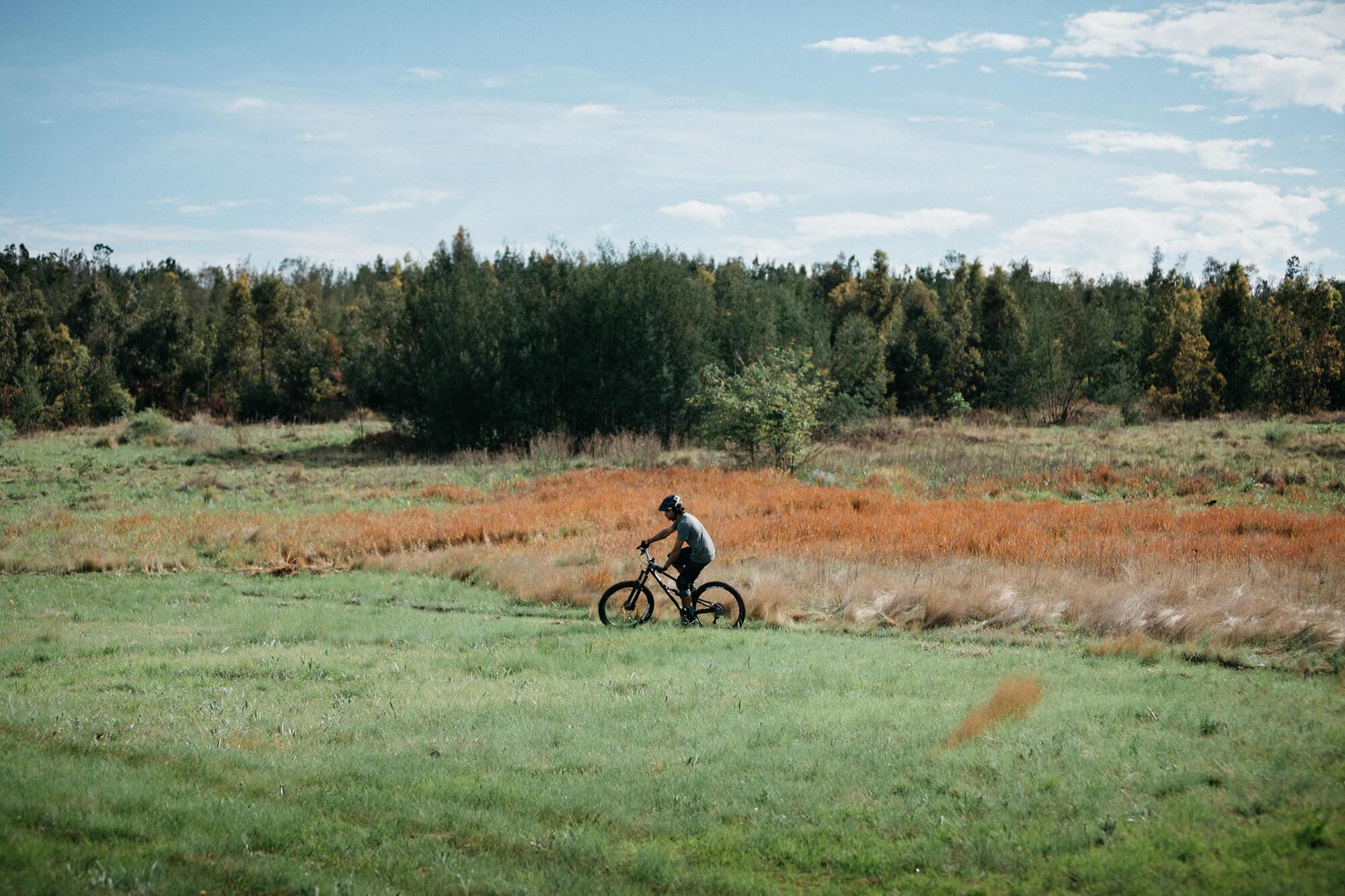 Blue Single Track Trail